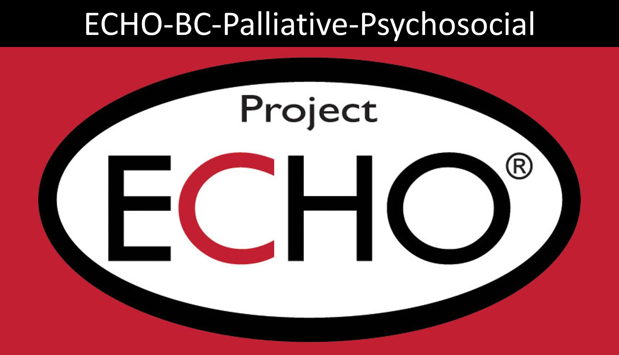 Echo project logo