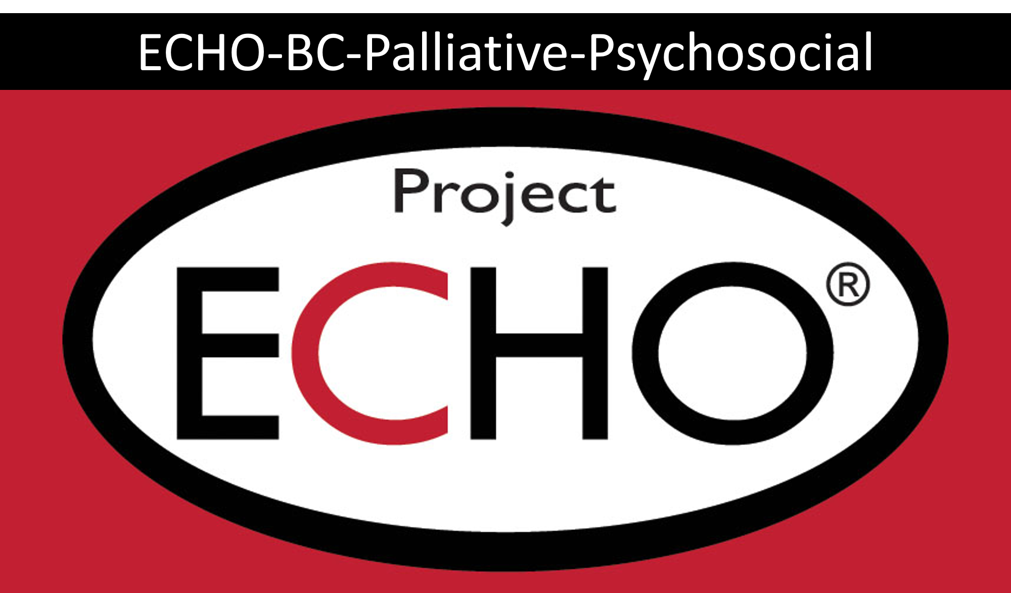 echo project logo